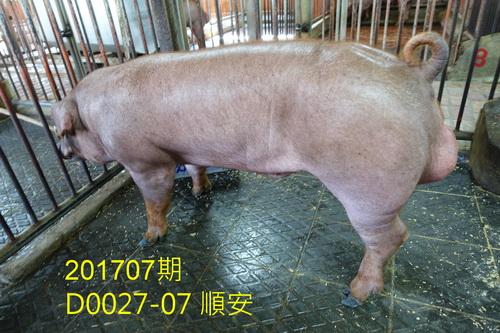 中央畜產會201707期D0027-07拍賣照片