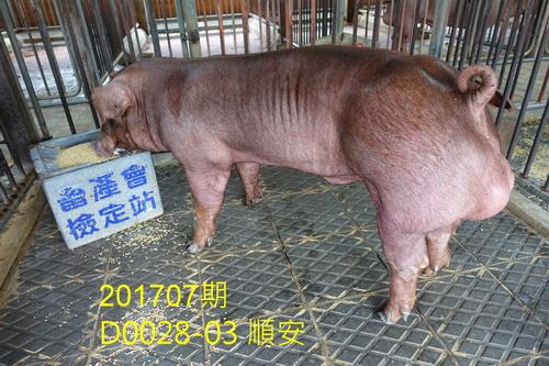 中央畜產會201707期D0028-03拍賣照片