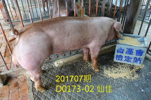 中央畜產會201707期D0173-02拍賣照片