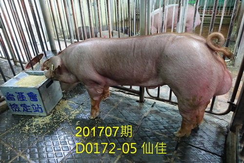 中央畜產會201707期D0172-05拍賣照片