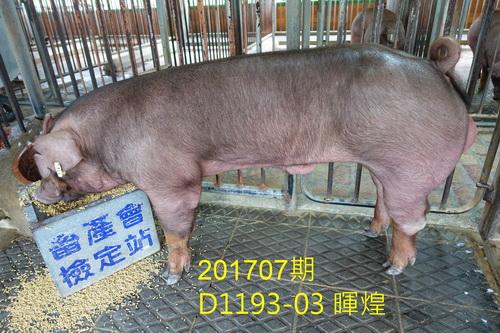 中央畜產會201707期D1193-03拍賣照片