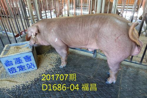 中央畜產會201707期D1686-04拍賣照片