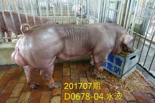 中央畜產會201707期D0678-04拍賣照片