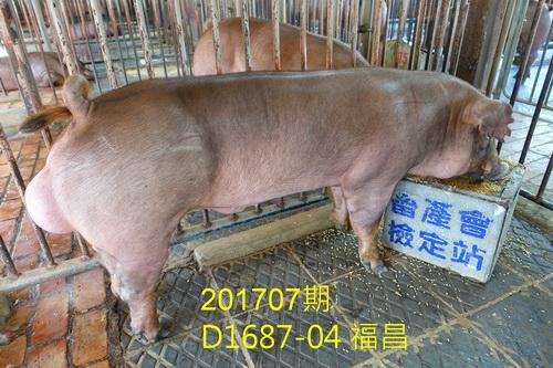 中央畜產會201707期D1687-04拍賣照片