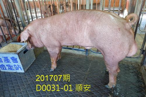 中央畜產會201707期D0031-01拍賣照片