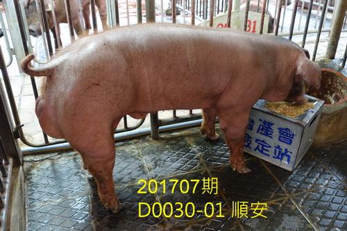中央畜產會201707期D0030-01拍賣照片