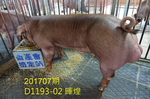 中央畜產會201707期D1193-02拍賣照片