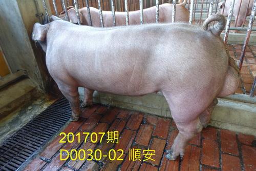 中央畜產會201707期D0030-02拍賣照片