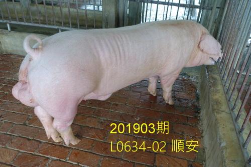 中央畜產會201903期L0634-02拍賣照片