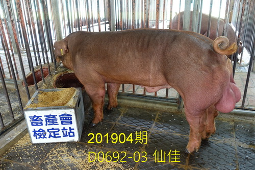 中央畜產會201904期D0692-03拍賣照片
