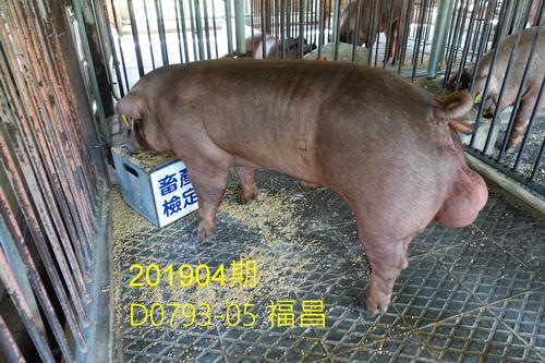 中央畜產會201904期D0793-05拍賣照片
