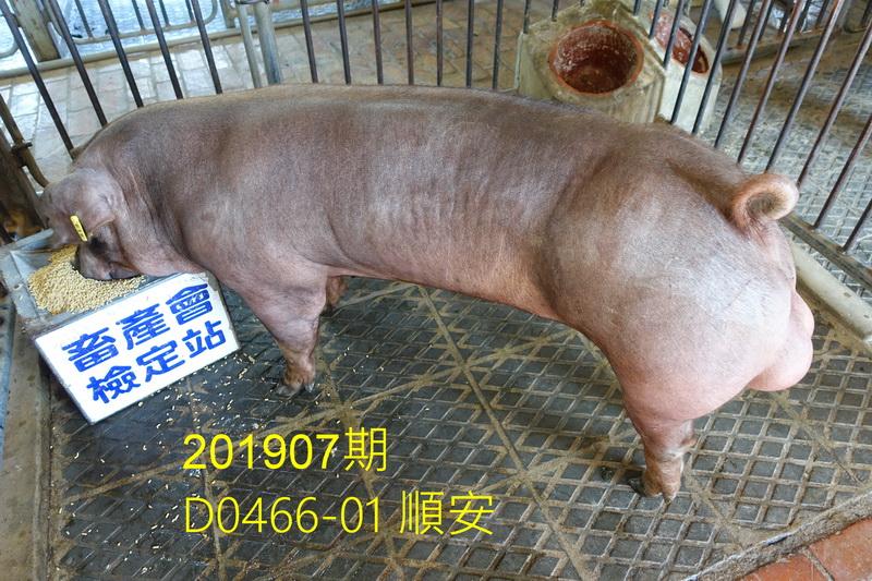 中央畜產會201907期D0466-01拍賣照片