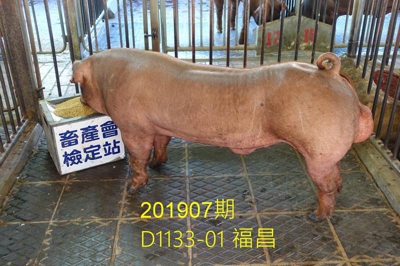 中央畜產會201907期D1133-01拍賣照片