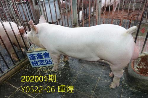 中央畜產會202001期Y0522-06拍賣照片