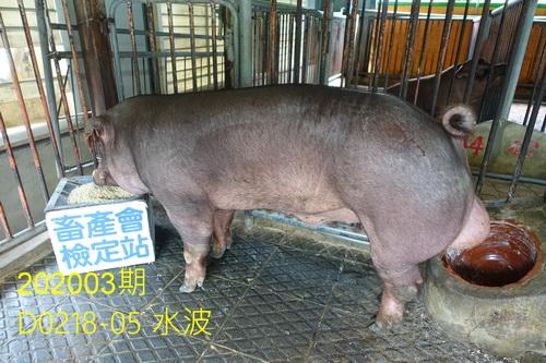 中央畜產會202003期D0218-05拍賣照片