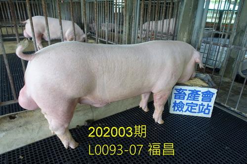中央畜產會202003期L0093-07拍賣照片