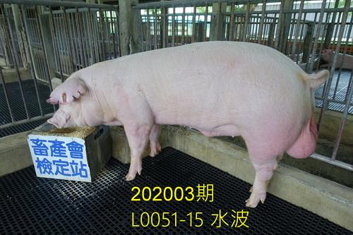 中央畜產會202003期L0051-15拍賣照片