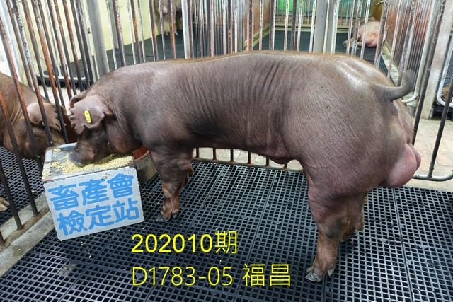 中央畜產會202010期D1783-05拍賣照片
