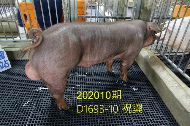 中央畜產會202010期D1693-10拍賣照片