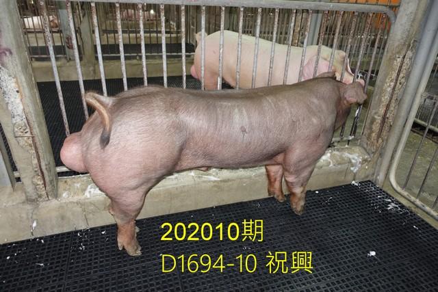 中央畜產會202010期D1694-10拍賣照片