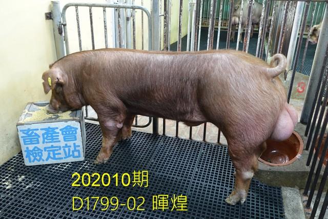 中央畜產會202010期D1799-02拍賣照片