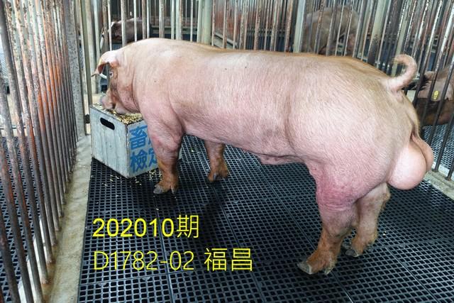 中央畜產會202010期D1782-02拍賣照片