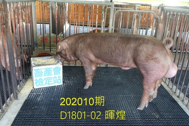 中央畜產會202010期D1801-02拍賣照片