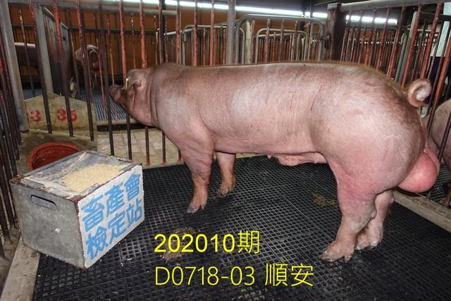 中央畜產會202010期D0718-03拍賣照片