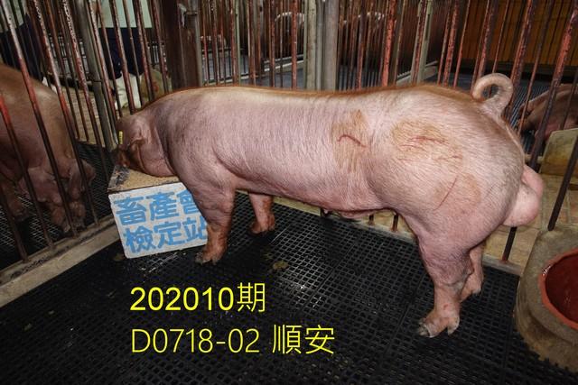中央畜產會202010期D0718-02拍賣照片