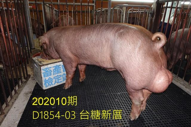 中央畜產會202010期D1854-03拍賣照片