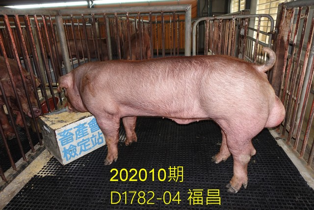 中央畜產會202010期D1782-04拍賣照片