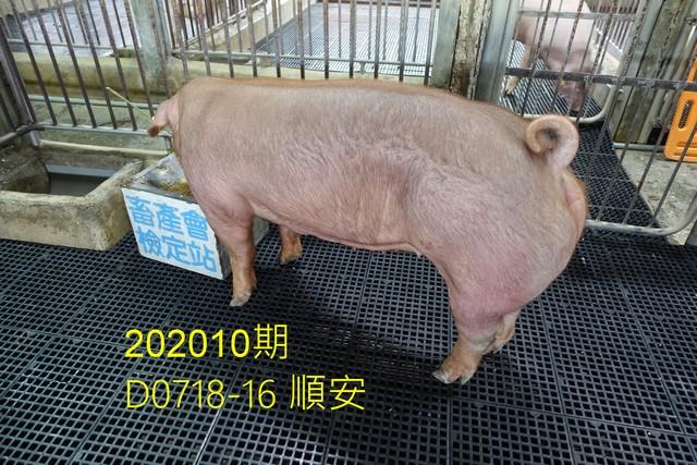 中央畜產會202010期D0718-16拍賣照片