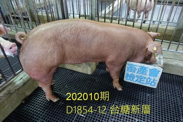 中央畜產會202010期D1854-12拍賣照片