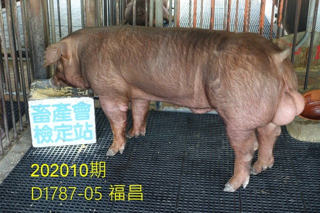 中央畜產會202010期D1787-05拍賣照片