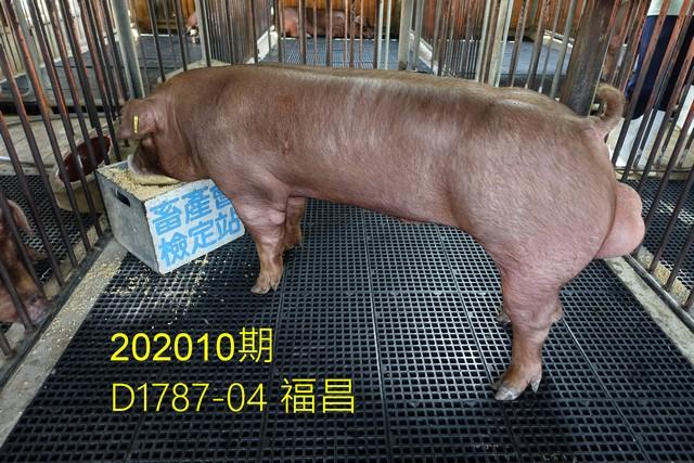 中央畜產會202010期D1787-04拍賣照片