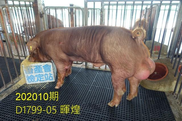 中央畜產會202010期D1799-05拍賣照片