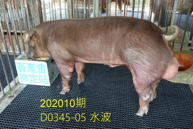中央畜產會202010期D0345-05拍賣照片