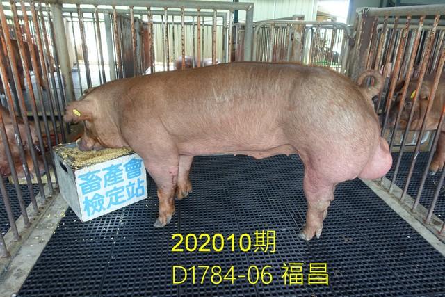 中央畜產會202010期D1784-06拍賣照片