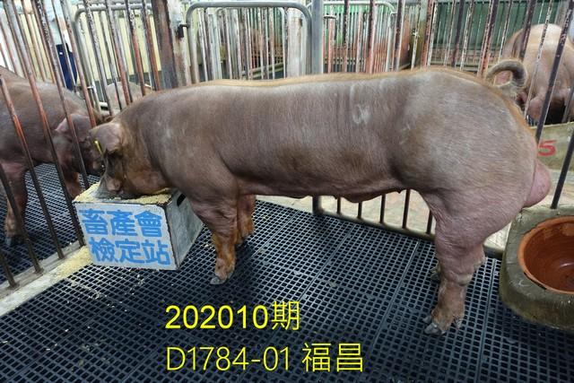 中央畜產會202010期D1784-01拍賣照片