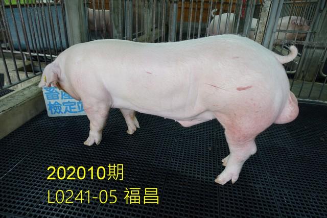 中央畜產會202010期L0241-05拍賣照片