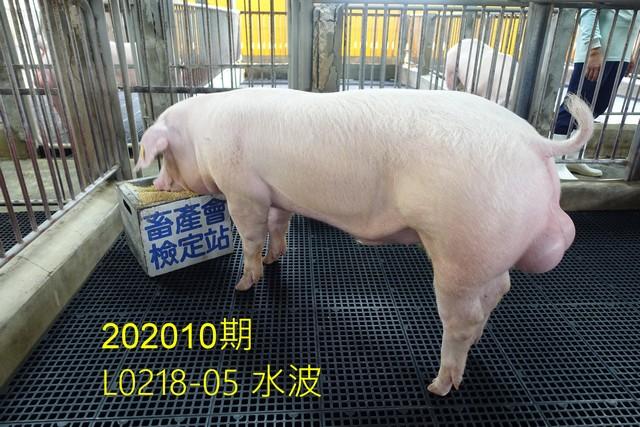 中央畜產會202010期L0218-05拍賣照片