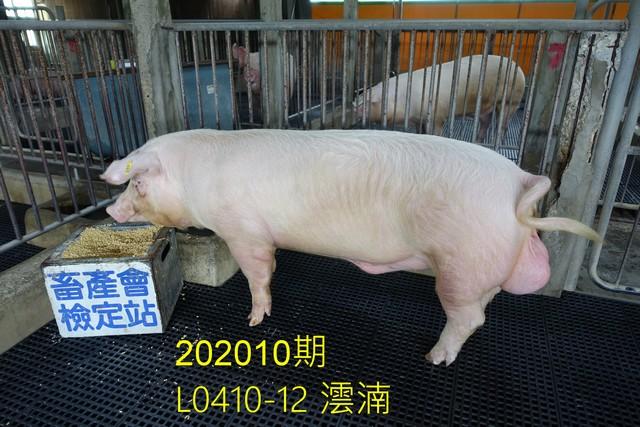 中央畜產會202010期L0410-12拍賣照片
