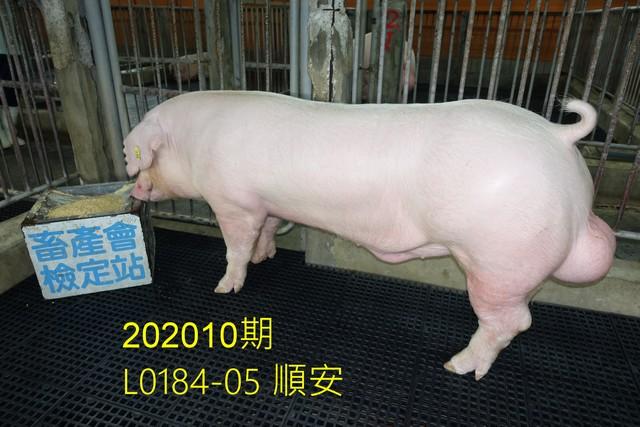 中央畜產會202010期L0184-05拍賣照片