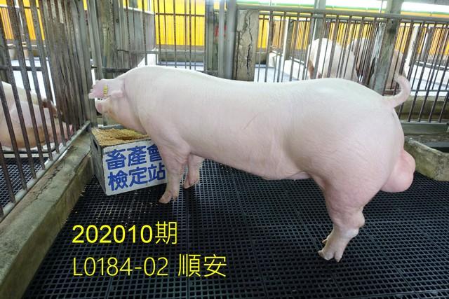 中央畜產會202010期L0184-02拍賣照片