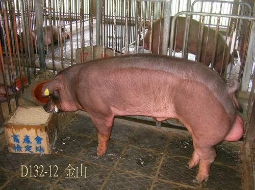 中央畜產會200504期D0132-12拍賣照片