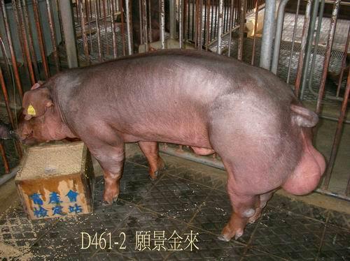 中央畜產會200504期D0461-02拍賣照片