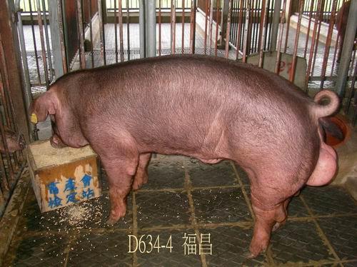 中央畜產會200504期D0634-04拍賣照片