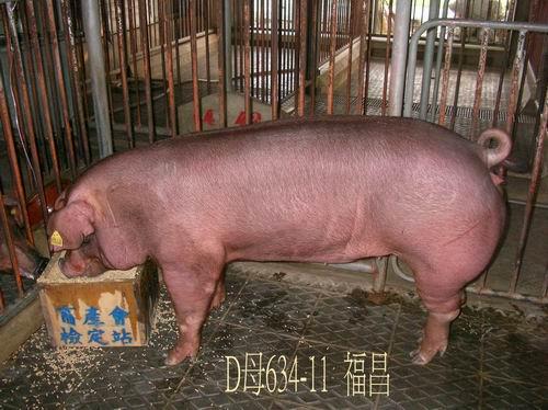 中央畜產會200504期D0634-11拍賣照片