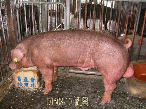 中央畜產會200504期D1508-10拍賣照片