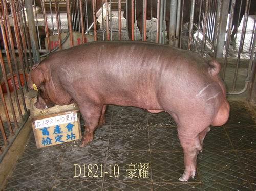 中央畜產會200504期D1821-10拍賣照片